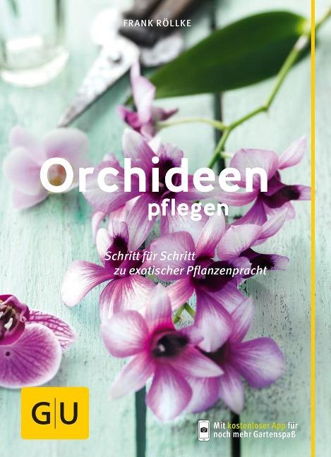 Orchideen pflegen - Frank Röllke
