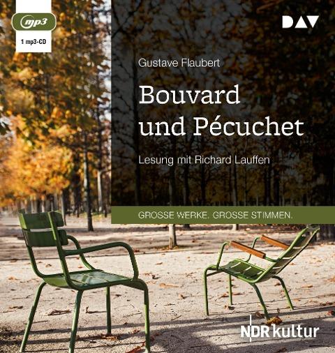 Bouvard und Pécuchet - Gustave Flaubert