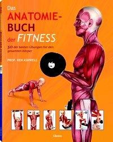 Das Anatomie-Buch der Fitness - Ken Ashwell