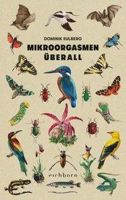Mikroorgasmen überall - Dominik Eulberg