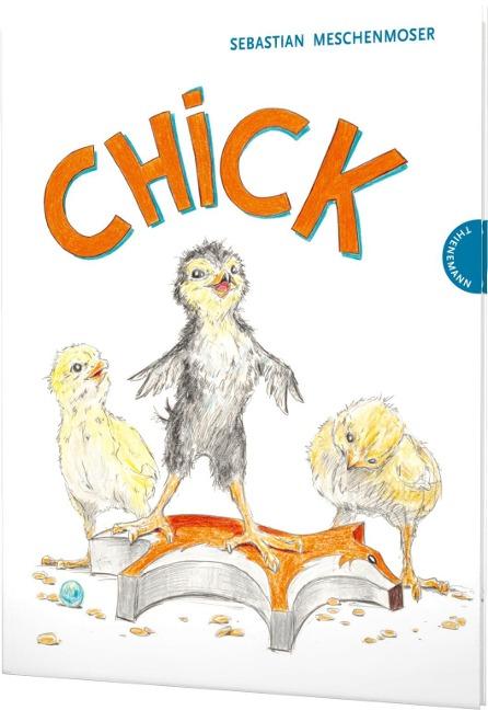 Chick - Sebastian Meschenmoser