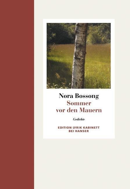 Sommer vor den Mauern - Nora Bossong