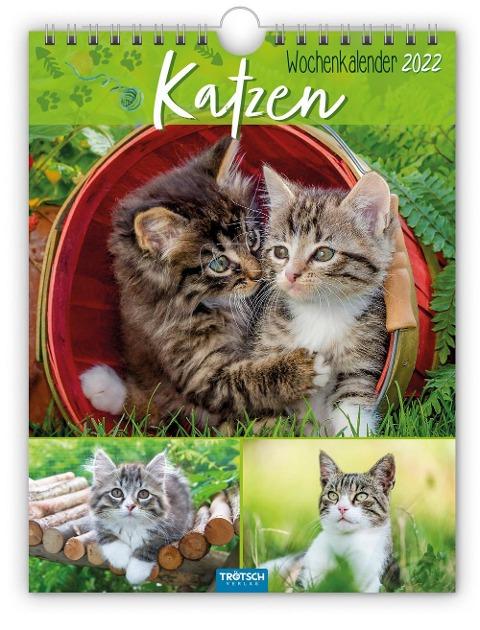 """Wochenkalender """"Katzen"""" 2022 -"""