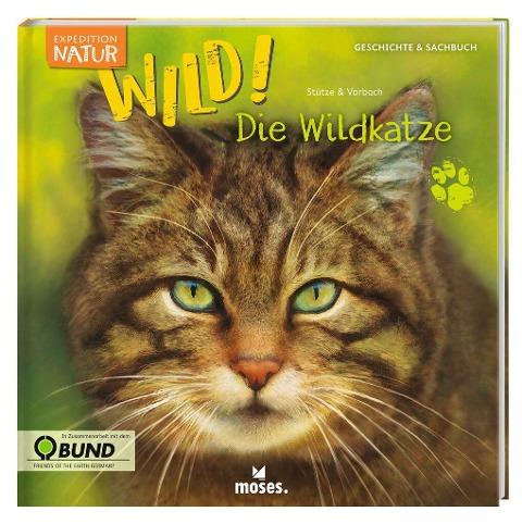 Expedition Natur: WILD! Die Wildkatze