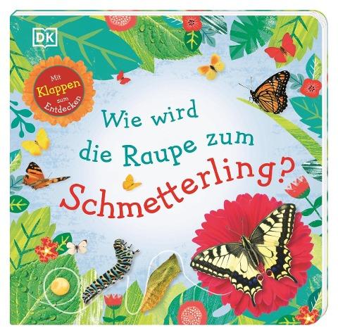 Wie wird die Raupe zum Schmetterling? -