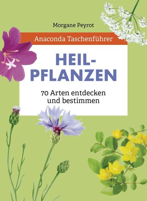 Anaconda Taschenführer Heilpflanzen - Morgane Peyrot