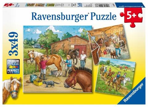 Mein Reiterhof. Puzzle (3 x 49 Teile) -