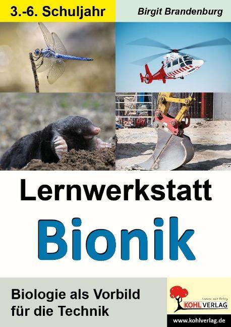 Lernwerkstatt Bionik - Birgit Brandenburg
