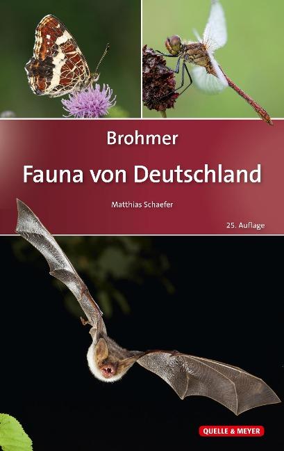 Brohmer - Fauna von Deutschland -
